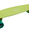 fishboard 23 light green